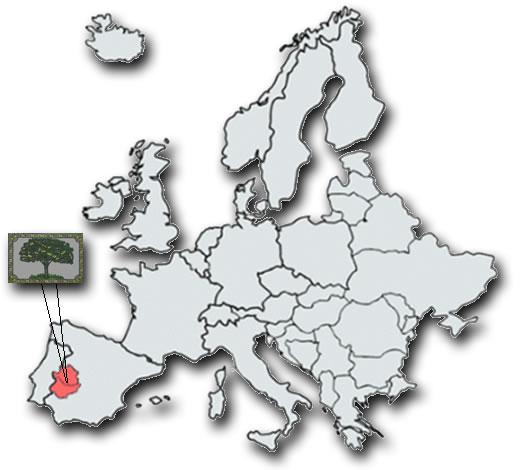mapa-extremadura-europa